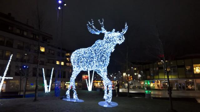 Drammen-elgen hELGe på Strømsø torg..