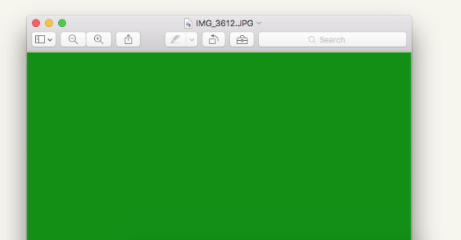 Dette var en merksnodig feil Apple, og ikke noe særlig morsomt for bildeproffer.