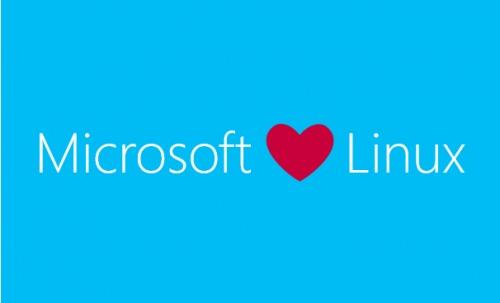 Microsoft har lagt sin elsk på Linux.