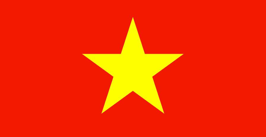 Vietnam skal ha sikret Googles hjelp med å fjerne
