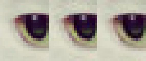 Google jobber med et nytt bildeformat for Internett. Bildet er fra Jpeg-komprimeringen Guetzli.