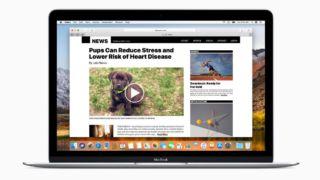 Tjente over en million kroner på å hacke Edge og Safari