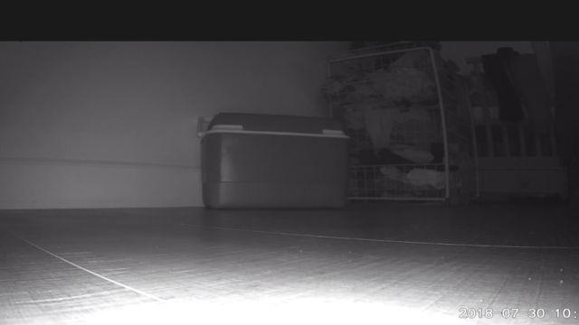 I et mørkt soverom har ikke WyzeCam problemer med å lyse opp tilstrekkelig.