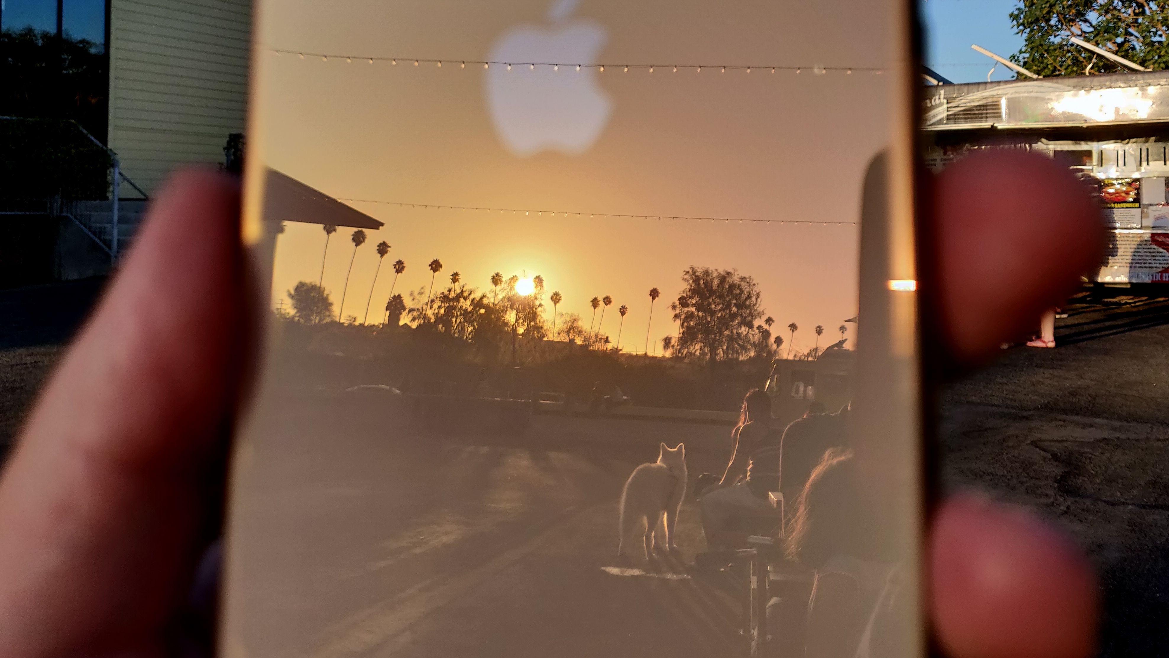 SNIKTITT: iPhone Xs Max - se bildeduellen mot OnePlus 6