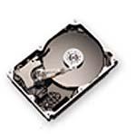 Maxtor 160 GB
