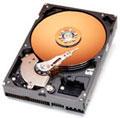 WD 120 GB harddisk