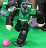 Robocup 2005