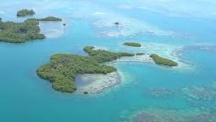 TIL SALGS:  Denne øya utenfor kysten av Panama er til salgs for ca. 550 000 kr. Noe myrlendt, men beboelig ifølge Private Islands Online.