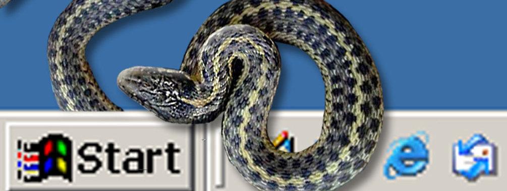 Gumblar-ormen sprer seg via nettsteder og gir deg en noe spesiell Google-opplevelse...