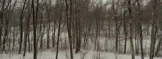 Denne relativt triste januar-utsikten fra et stuevindu i Oslo fenger nettbrukere over hele verden.