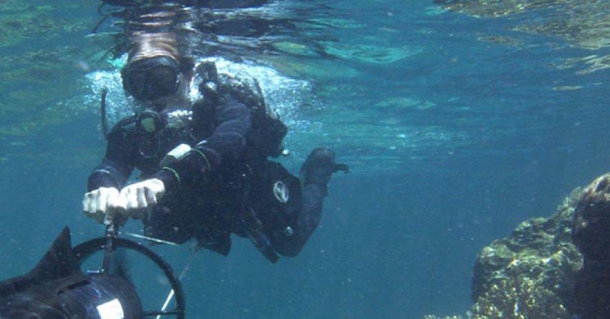 Snart kan du utforske havbunnen med Google.