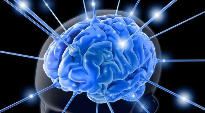 Hjernen er den mest avanserte «datamaskinen» vi kjenner. Nå kan den brukes på direkten...