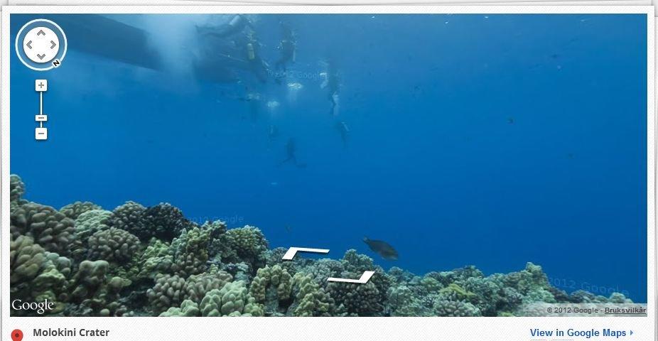 Slik ser det ut på havbunnen utenfor Hawaii.